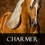 Charmer_icon.jpg
